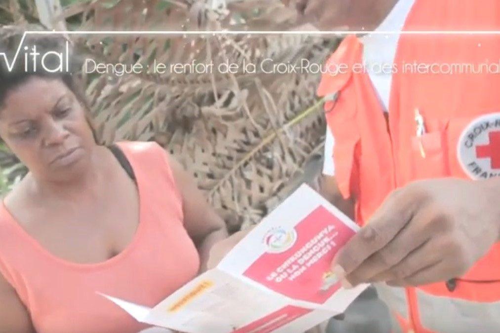 Epidémie de dengue à la Réunion : La Croix-Rouge française sur le terrain